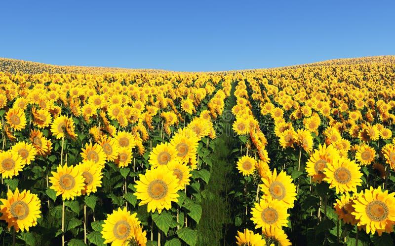 Fält av solrosor på en bakgrund av blå himmel stock illustrationer