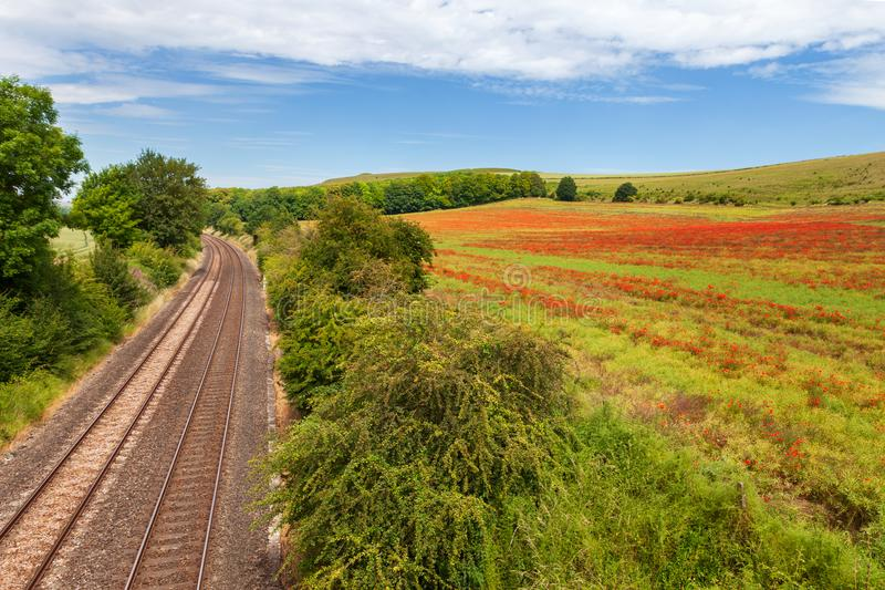Fält av vallmo som tillsammans med kör den järnväg linjen, Wiltshire, UK royaltyfri foto