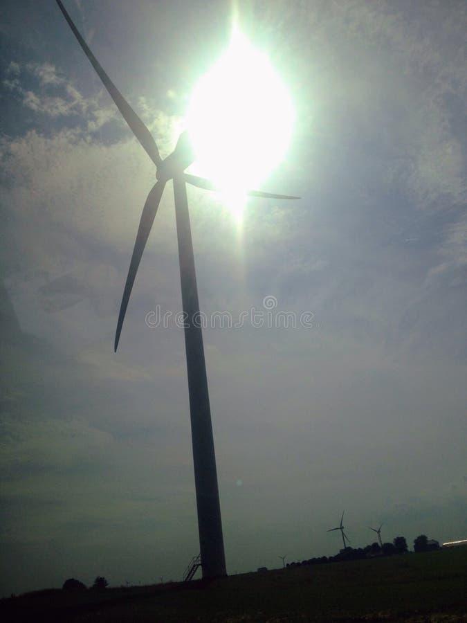 Fält av vind royaltyfri foto