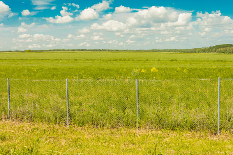 Fält bak staketet mot himlen med moln och skogar royaltyfri bild