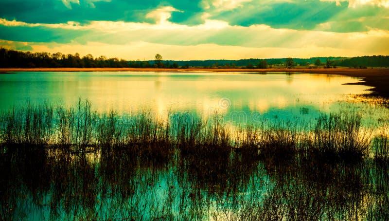 Fält efter tidvattnet fotografering för bildbyråer