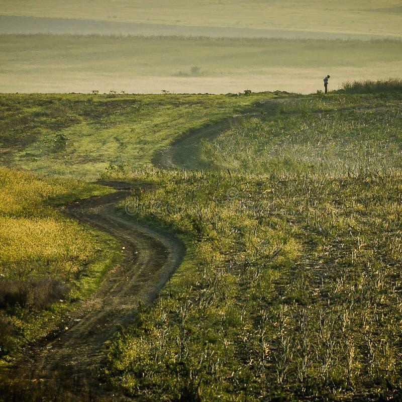 Fält för grönt gräs med en man arkivbild