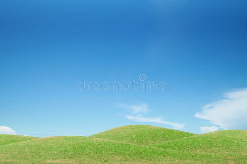 Fält för grönt gräs och blå himmel arkivfoton