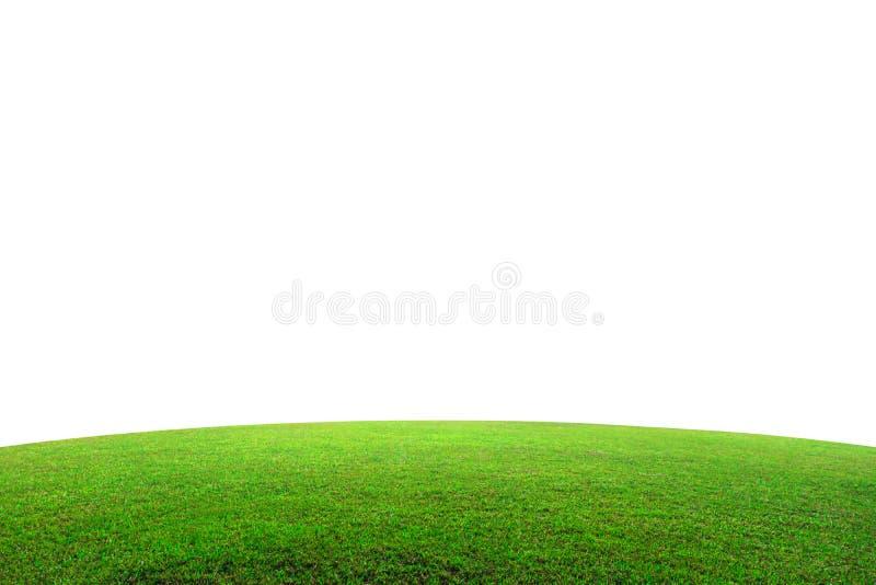 Fält för grönt gräs på berget som isoleras på vit bakgrund Härlig grässlätt med lutningen Snabb bana arkivbilder