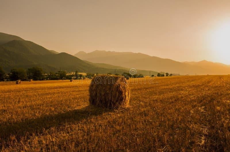 Fält för höbaler på solnedgången fotografering för bildbyråer