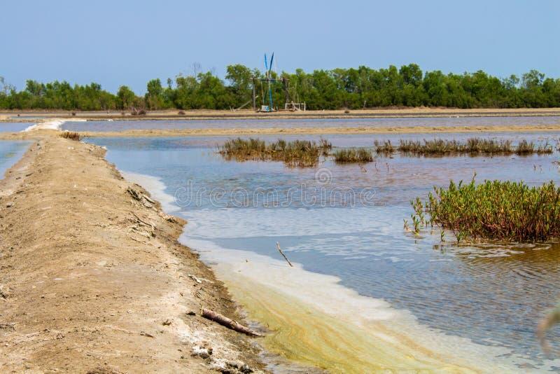 Fält för salt produktion i Thailand royaltyfri fotografi