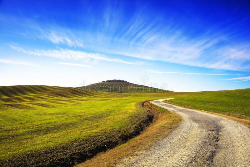 Fält gjorde randig vågor, lantlig väg och olivträduphiill tuscany royaltyfria foton