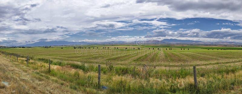 Fält i dalen nära Logan i Utah royaltyfri fotografi