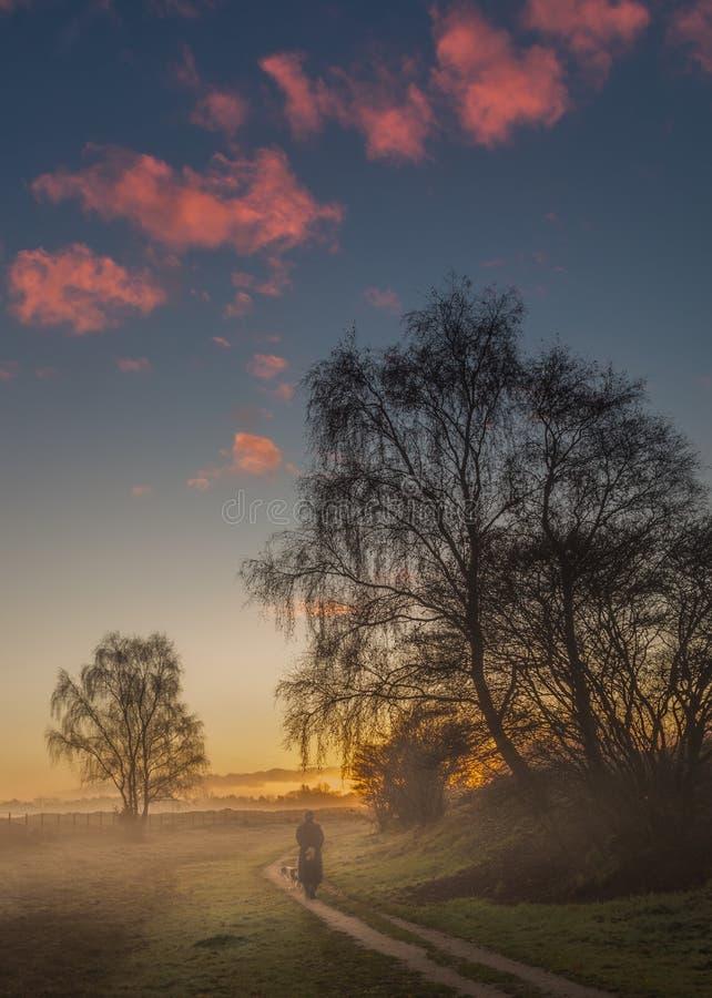 Fält i soluppgången i staden av Blaricum royaltyfria bilder