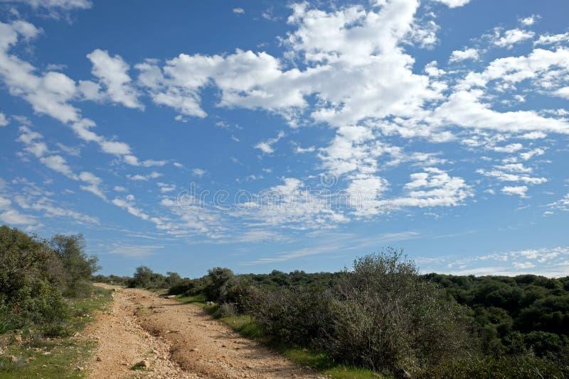 Fält, kullar och härlig himmel i Judea, Israel royaltyfri bild