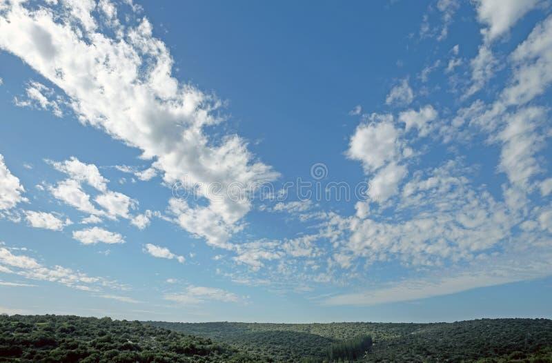 Fält, kullar och härlig himmel i Judea, Israel royaltyfri foto