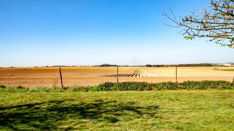 Fält med grönt gräs med lantgårdland i bakgrunden arkivfoto