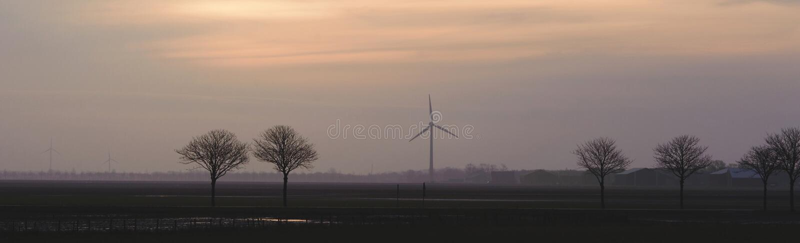 Fält med träd och väderkvarnar på horisonten i aftonen typisk holländsk liggande arkivfoton