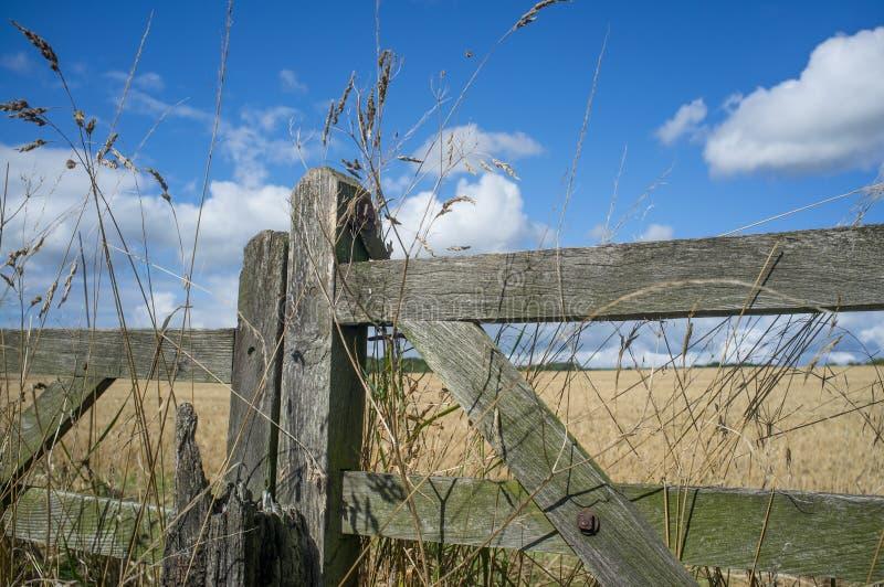 Fält och blå himmel med den gamla trälantgårdporten arkivbilder