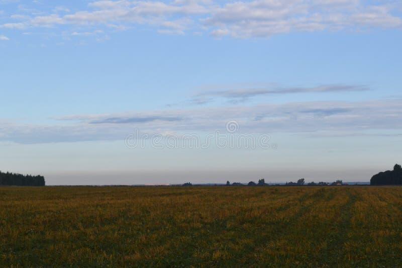 Fält och himmel med molnstackmolnmoln royaltyfri foto