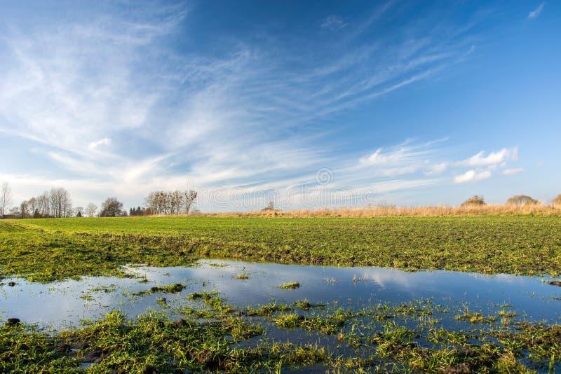 Fält som översvämmas med vatten och moln i himlen arkivbilder