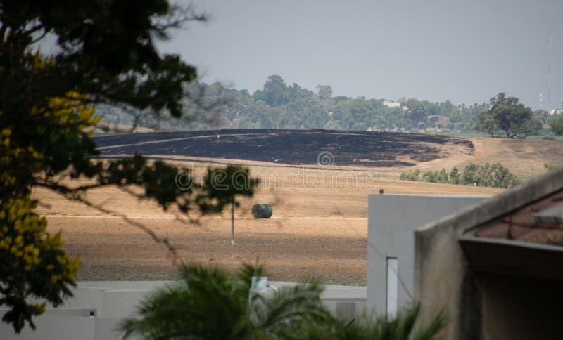Fältet brände vid branddraken, Negev, Israel royaltyfri foto