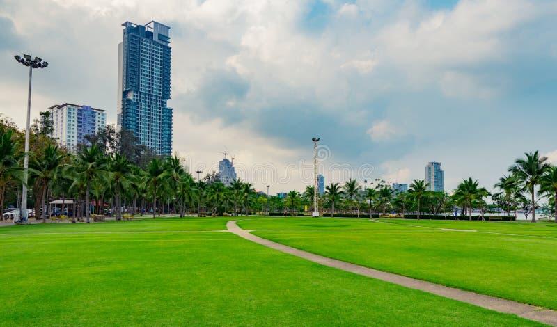 Fältet för grönt gräs, den fot- vägen och kokospalmer på staden parkerar bredvid havet modernt byggande royaltyfria foton