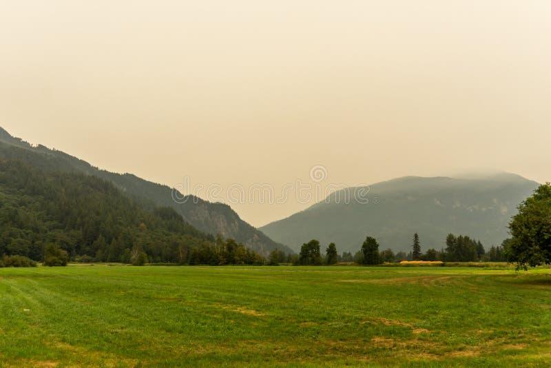 Fältet och bergen för landskapgräsplanlantgård i ogenomskinligheten av smog arkivbild