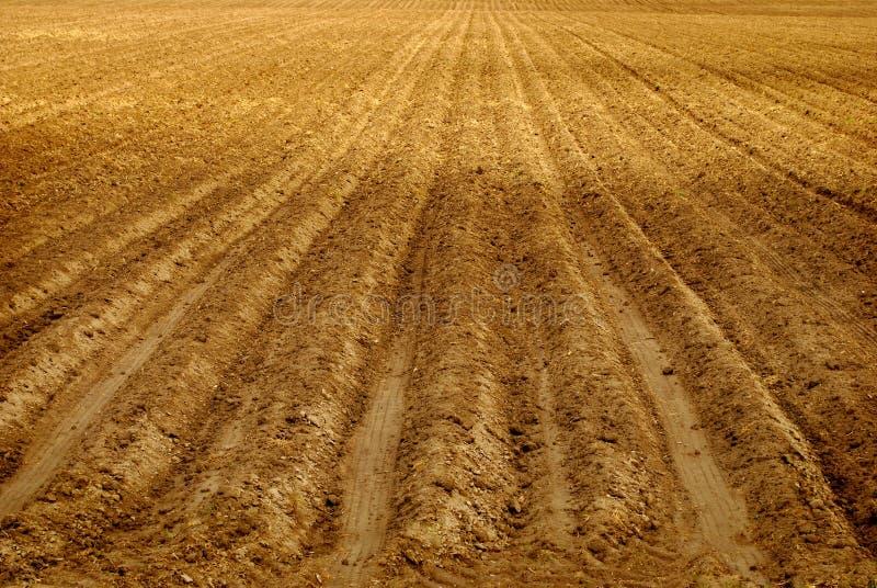 fältet plöjer rader arkivfoto
