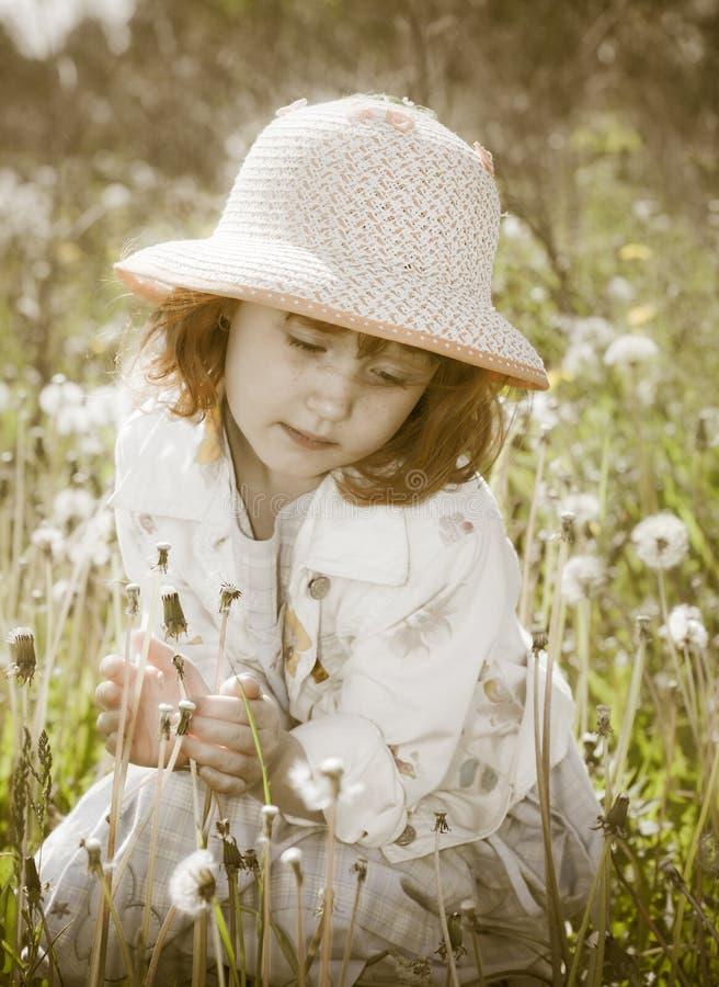 fältflicka little fotografering för bildbyråer