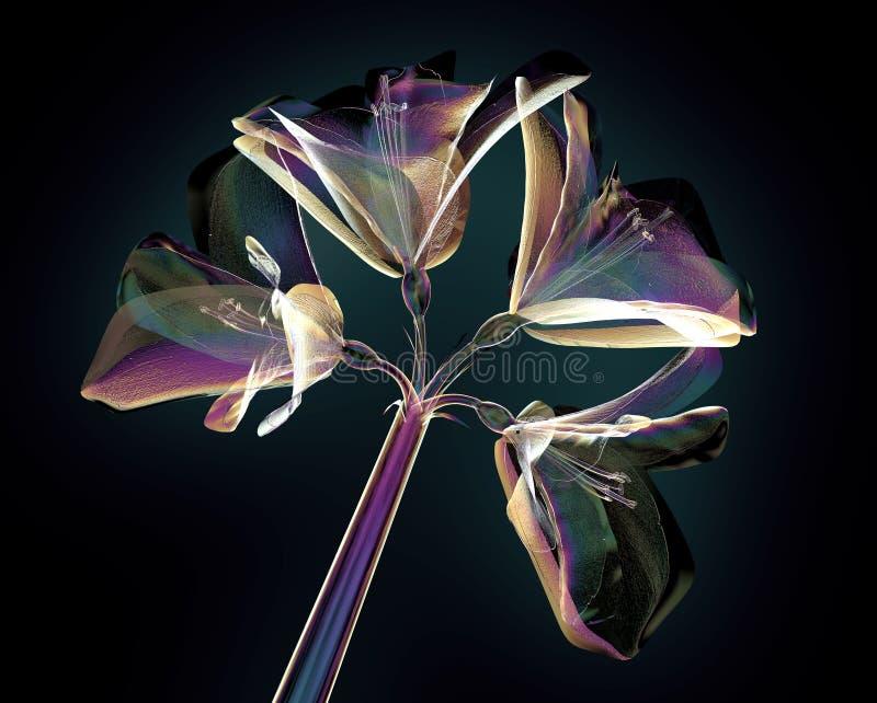 Färben Sie Glasblume lokalisiert auf Schwarzem, Amaryllis lizenzfreie abbildung