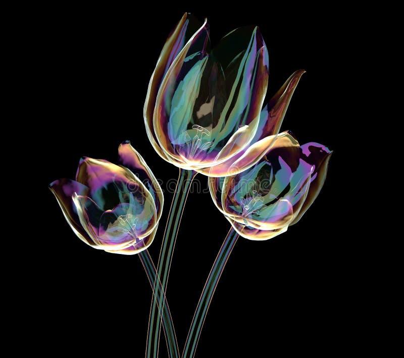 Färben Sie Glasblume lokalisiert auf Schwarzem, die Tulpe lizenzfreie abbildung