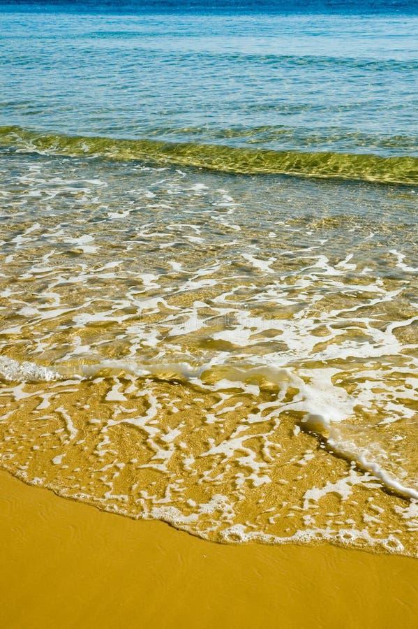 Färben Sie Strand gelb stockbilder
