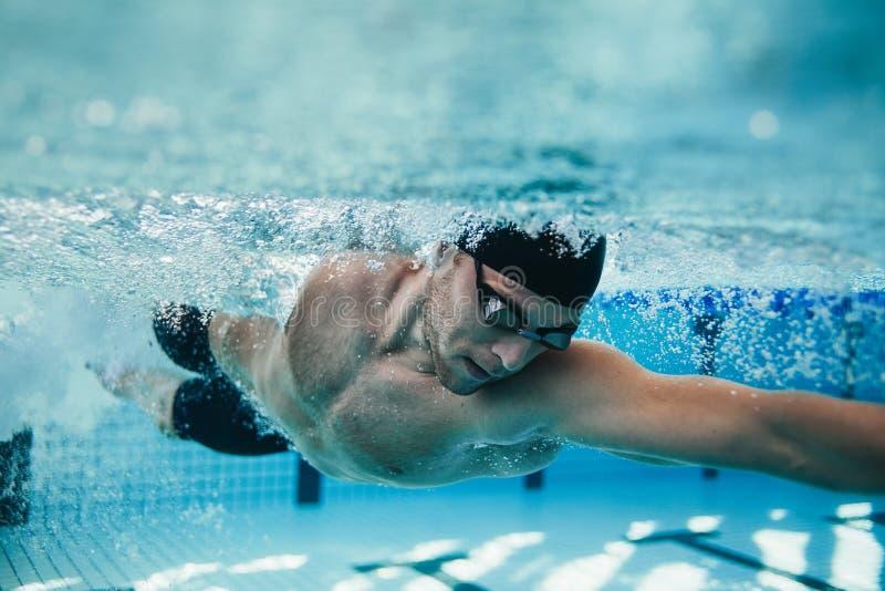 Färdig simmareutbildning i pölen arkivfoto