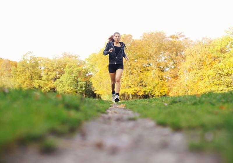 Färdig ung kvinna som joggar i en parkera på en sommardag royaltyfri fotografi