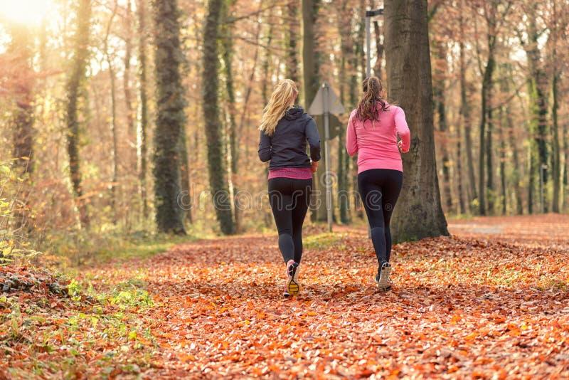 Färdig ung kvinna som två tillsammans joggar royaltyfria bilder