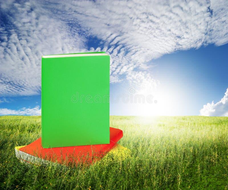 Färg bokar i gräsfält och blå himmel fotografering för bildbyråer