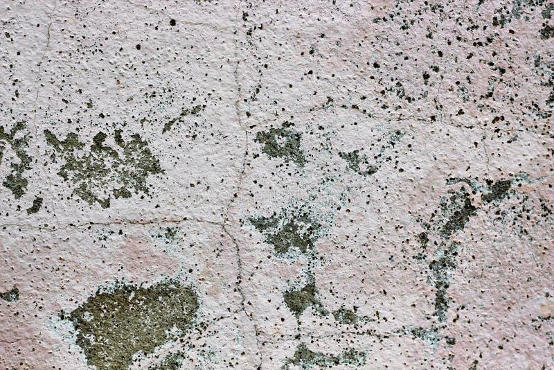 Färg closeup som textureras, vägg, buse, yttersida som är gammal, bakgrund, textur, golv royaltyfri foto