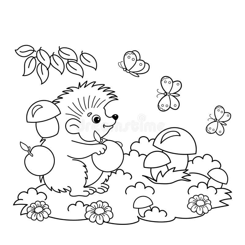 Färga sidaöversikten av tecknad filmigelkotten med äpplen och champinjoner i ängen med fjärilar Färgläggningbok för ungar stock illustrationer