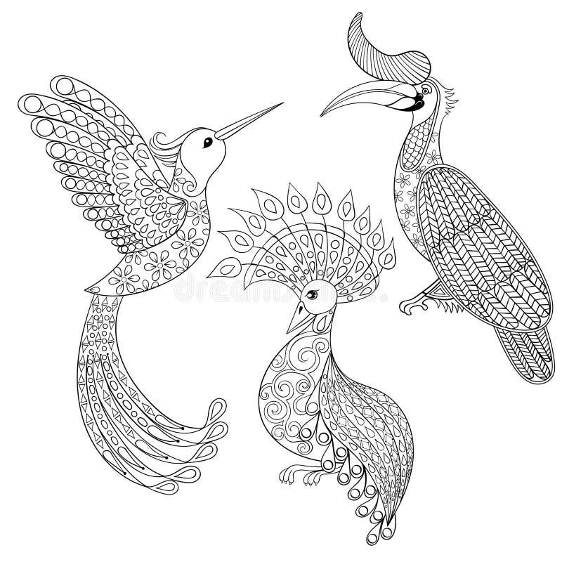 Färga sidan med fågelnoshörningen, kolibrin och den exotiska fågeln, royaltyfri illustrationer