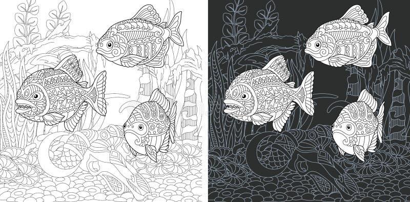 Färga sidor med Piranhafisken vektor illustrationer