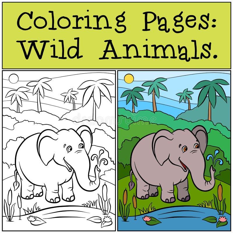 Färga sidor: Vilda djur gullig elefant vektor illustrationer