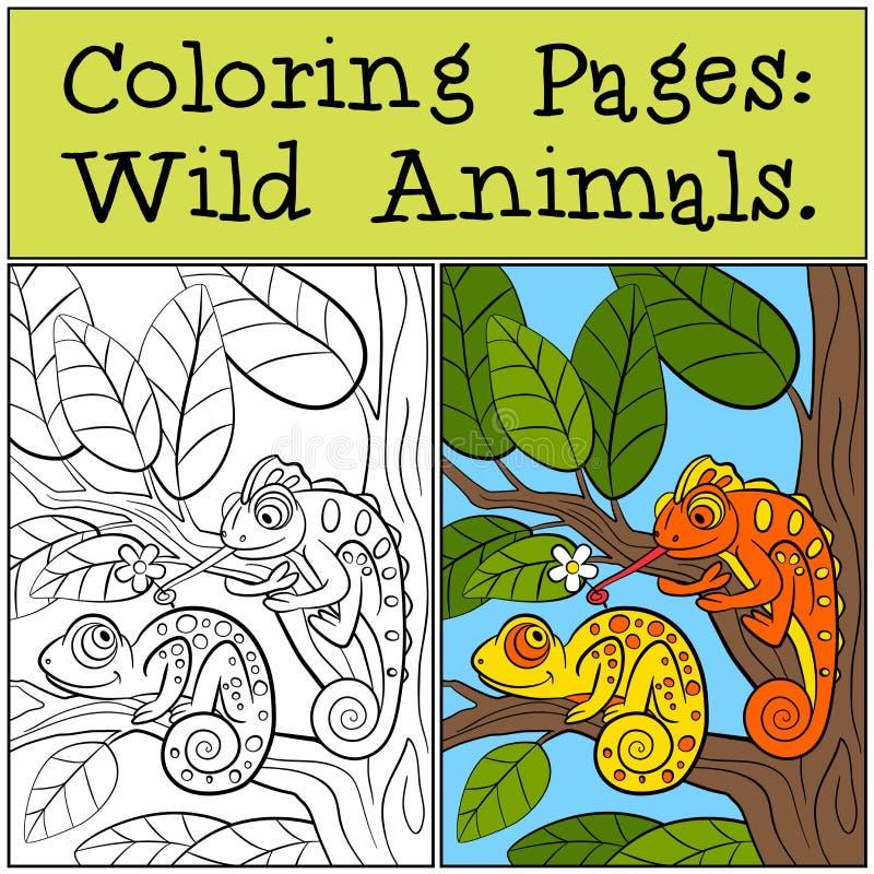 Färga sidor: Vilda djur Två lilla gulliga kameleonter vektor illustrationer