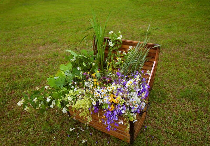färgad blommasommar för härlig bukett arkivbild
