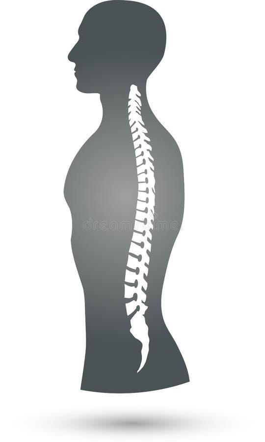 Färgad, ortopedisk och sjukgymnastiklogo för person och för rygg, royaltyfri illustrationer