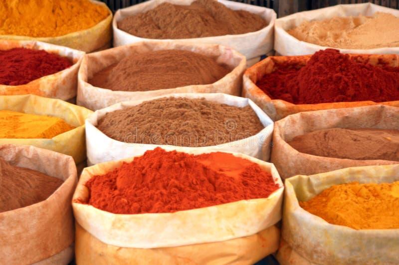 färgade kryddor royaltyfria bilder