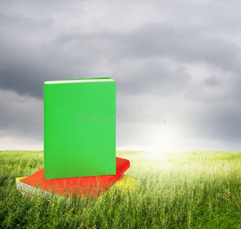 Färgböcker i gräsfält och rainclouds fotografering för bildbyråer