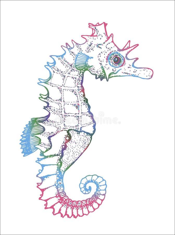 Färgbild av ett havsdjur Diagram seahorse royaltyfri illustrationer