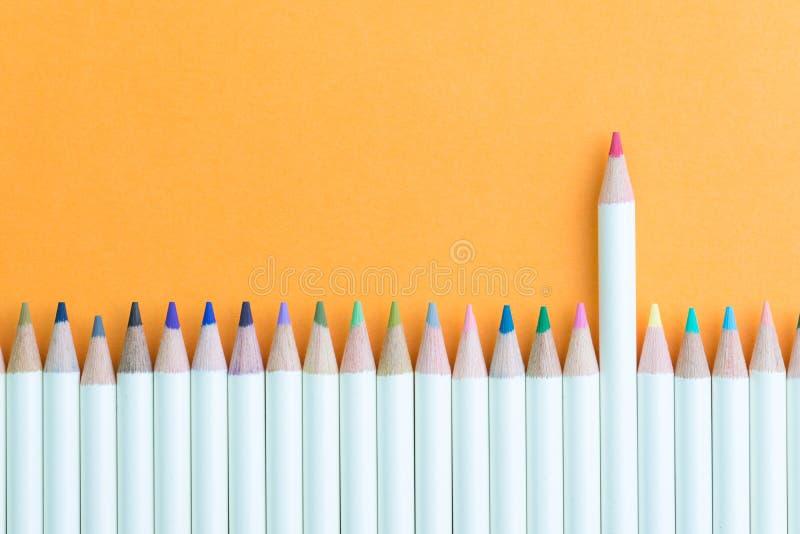 Färgblyertspenna i rad med ställning ut rosa genom att använda som individuell kreativitet, ledarskap eller kvinnlig och kvinnale royaltyfria foton