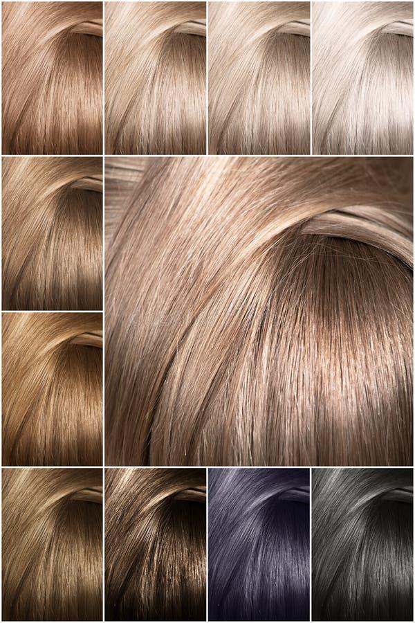 Färgdiagram för toner Färgade hårfärgprövkopior som ordnas på ett kort i propra rader fotografering för bildbyråer