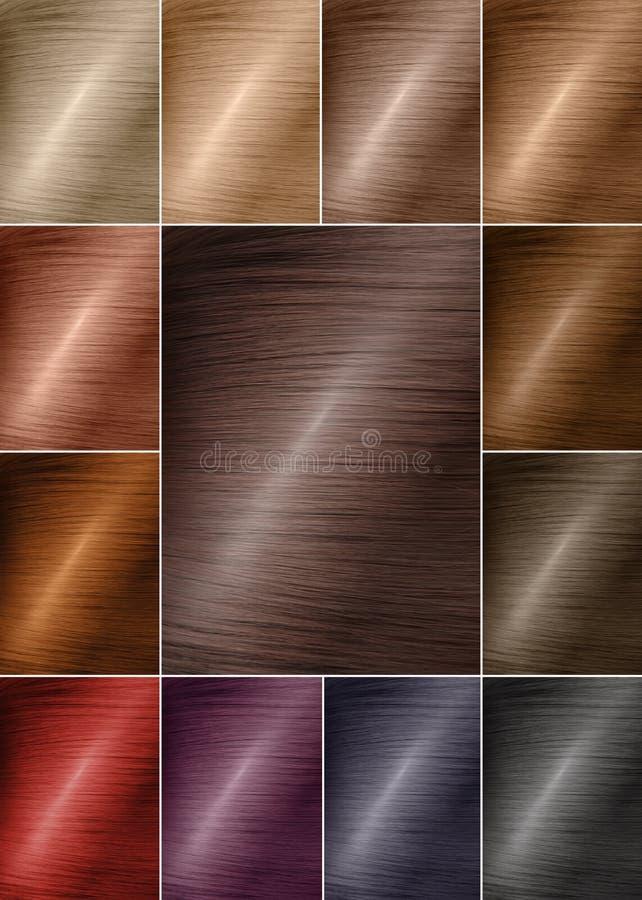 Färgdiagram för toner Hårfärgpalett med en lång räcka av provkartor Färgade hårfärgprövkopior som ordnas på ett kort i propra rad arkivbilder