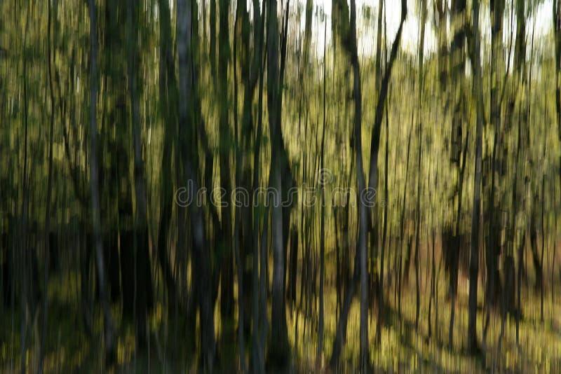 Download Färger fotografering för bildbyråer. Bild av linje, yellow - 994863