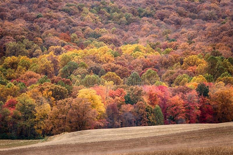 Färger av Gettysburg royaltyfri fotografi