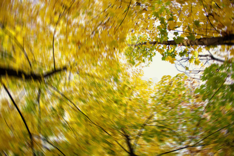 Download Färger av hösten arkivfoto. Bild av kort, brigham, stil - 27281814