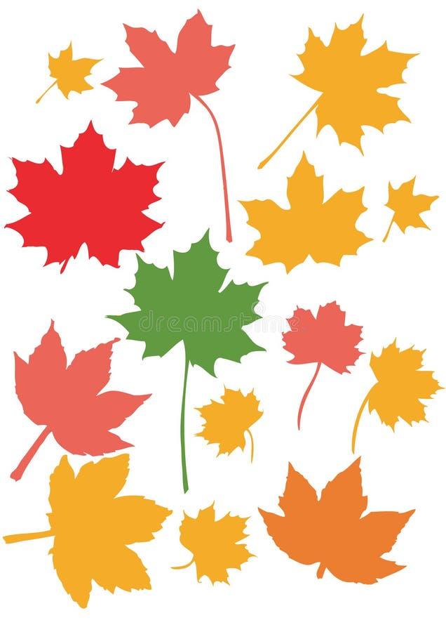 färger faller leaveslönn royaltyfri illustrationer